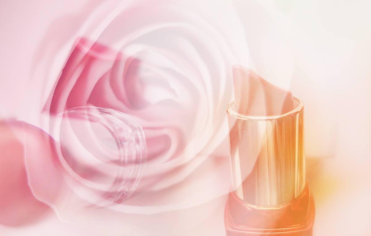 アムネシアは蜜愛に花開く