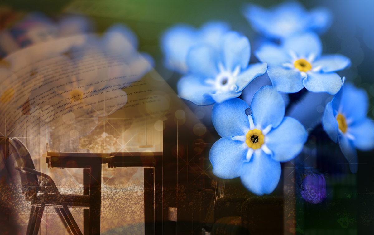 勿忘草は、ノスタルジアな潤愛に乱れ咲く